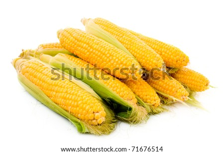 Few corn isolated on white