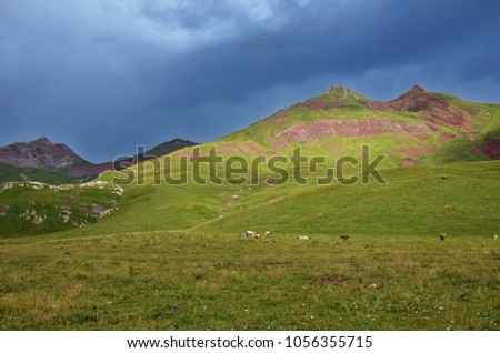 Few cows under dark sky on a green meadow #1056355715