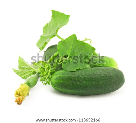 few cucumbers with green leaves - stock photo