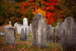 Few old gravestones are on the green grass among dry fall leaves on the ancient cemetery and red, yellow, orange, green trees on the background on a sunny warm day.