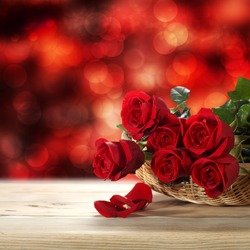 few roses and background of bokeh