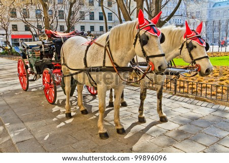 Fiaker horse carriage in Vienna, Austria (no people)
