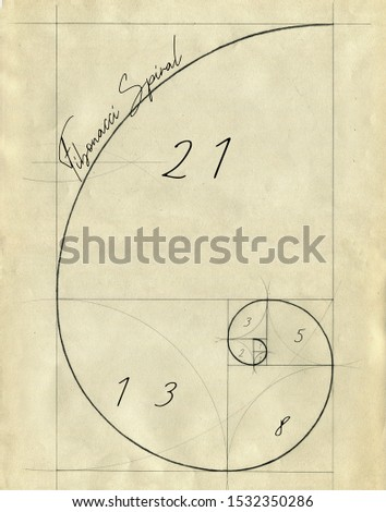 Fibonacci  Golden Spiral wall art poster drawing by hand with classical architectural tools compass and rules