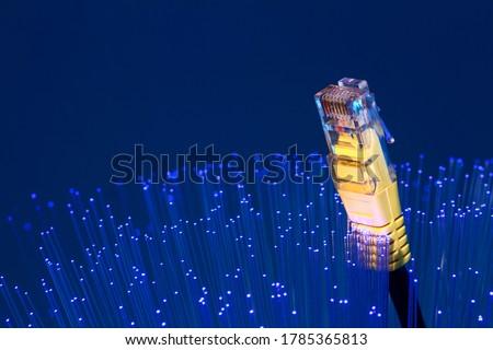 Fibre optic strands with a ethernet lan broadband cable, FTTP full fibre broadband concept Stock photo ©