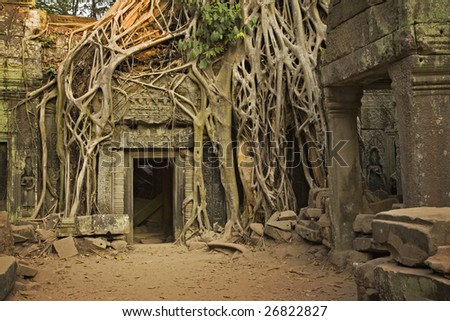 Ficus Strangulosa tree growing over a doorway in the ancient ruins of Ta Prohm at the Angkor Wat site in Cambodia - stock photo