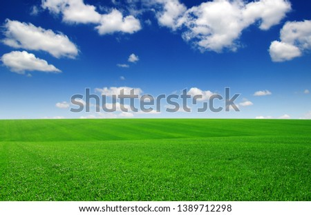 Field and blue sky with white clouds #1389712298