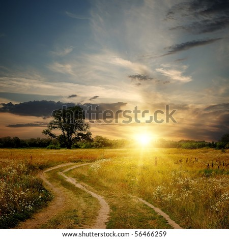 Field and dirt road to sunset. Evening landscape