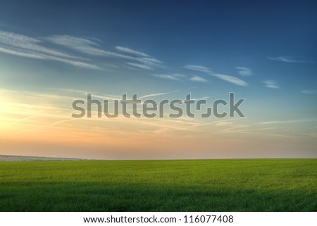 Field and picturesque sky. Highly detailed color #116077408