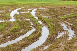 Field and road after heavy rains. Deep ruts from the wheels of agricultural machinery, puddles and dirt on the field. Severe weather conditions during field work due to rain in agriculture.