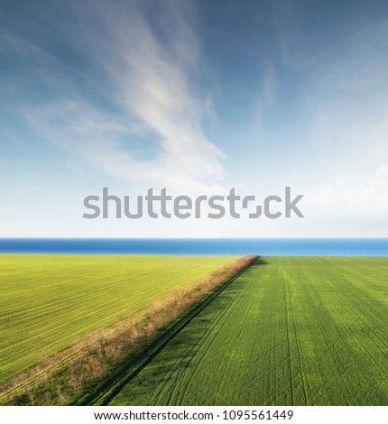 field and sea as a background....