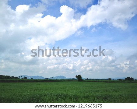 field and sky #1219665175