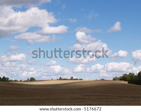 field and sky #5176672