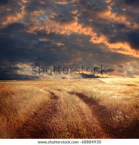 field and stormy sky