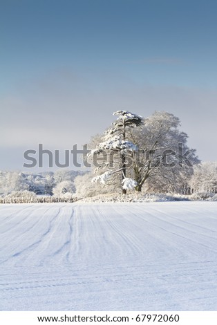 Field and woodland covered in snow on a sunny day in Dorset England - stock photo