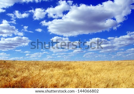 Field at Alentejo region, Portugal.