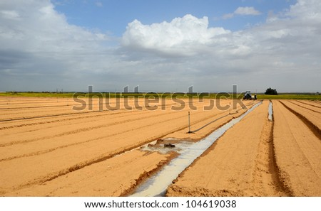 Field being watered by automatic sprinkler system