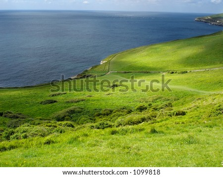 Field by the Ocean, South England