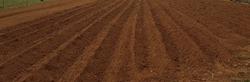 field dug soil rows  milled in spring season  agriculture plowed field