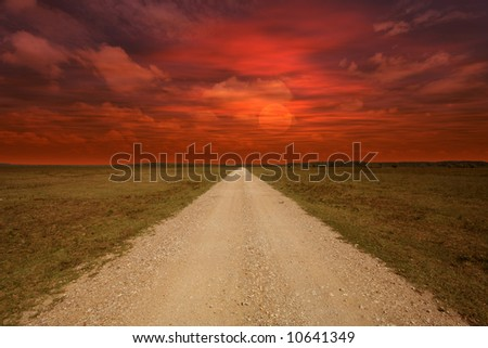 field during sunset with path