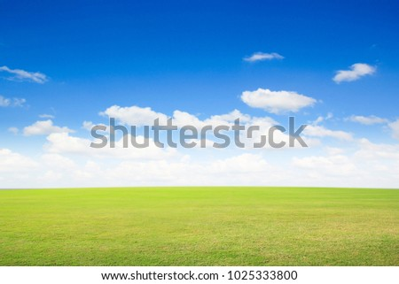 field green grass blue sky with cloud cloudy landscape background #1025333800