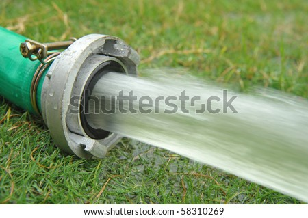 field hosepipe sprinkler grass