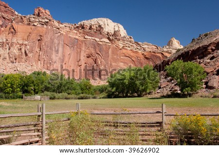 Field in Fruita at the Capitol Reef National Park in south-central Utah.