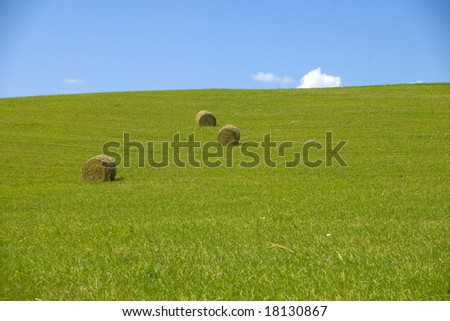Field in summer, bale of straw