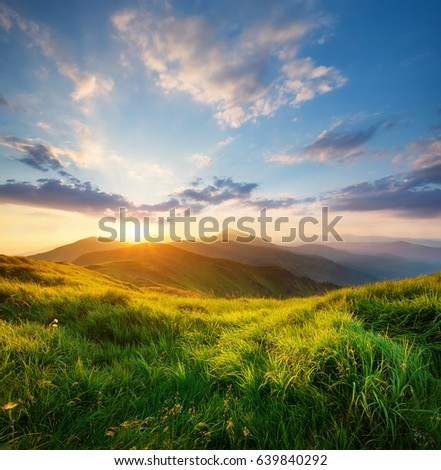Field in the mountain valley. Beautiful natural landscape in the summer time #639840292