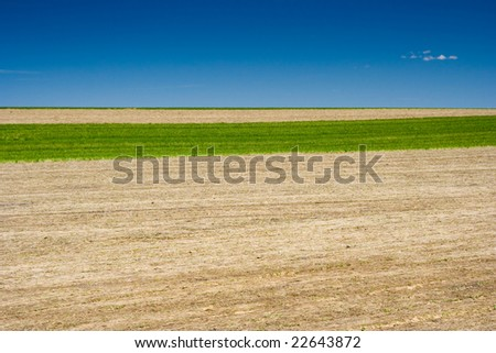 Field in the Rural Pennsylvania