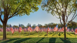 Field of American flags displayed on the honor of Veterans Day celebration on a beautiful autumn morning in Texas.