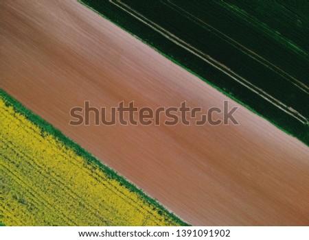 field of canola, empty field and wheat field