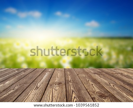 Field of daisies, blue sky and wood table.