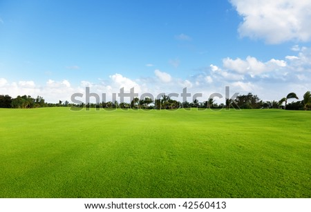 Stock Photo field of grass
