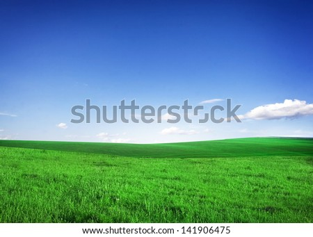 field of green grass and blue sky #141906475