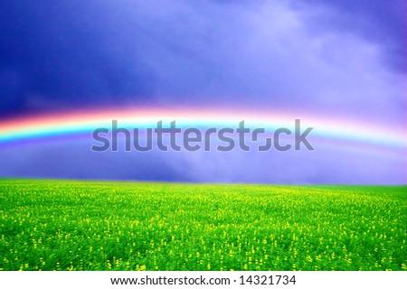 Field of green grass over rainbow sky