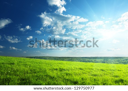 field of spring grass and forest #129750977