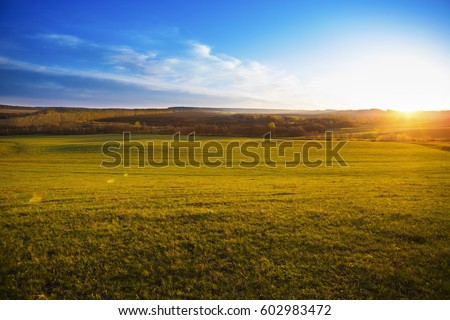 Field of spring grass on sundown. Spring meadow of grass on sunrise. #602983472
