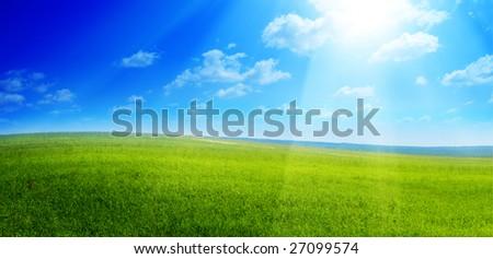 field of summer green grass - Shutterstock ID 27099574