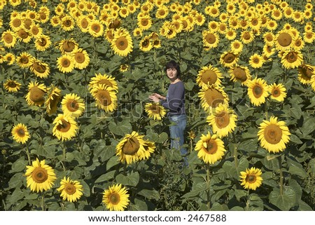 Field of sunflowers with happy woman. Blissful field of sunflowers. Horizontal view.