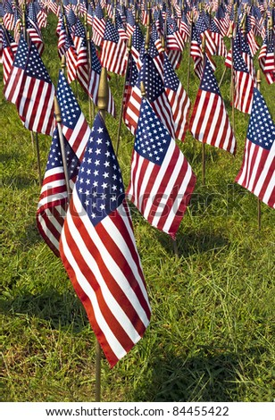 Field of US Flags with one flag isolated in the foreground