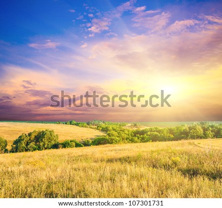 Field of wheat,  evening sky and sun. Sunset. Green planet - Earth #107301731