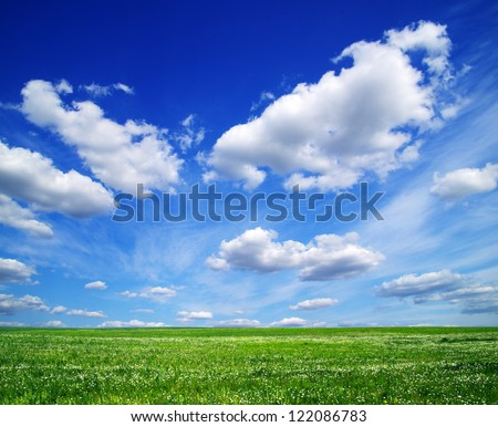 field on a background of the blue sky #122086783