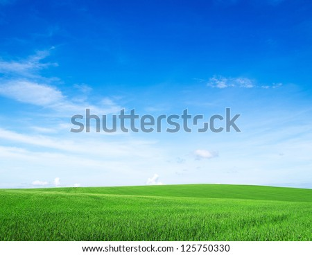 Stock Photo field on a background of the blue sky