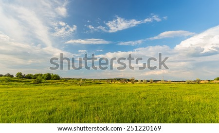 field on a background of the blue sky #251220169