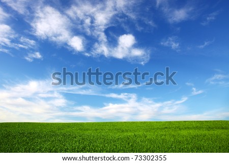 field on a background of the blue sky #73302355
