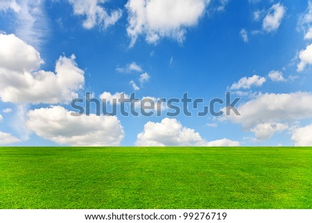 field on a background of the blue sky #99276719