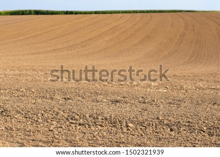 Field plowed, sown cereals. Agriculture plowed field in spring day. Black soil plowed field. Plowed field with blue sky