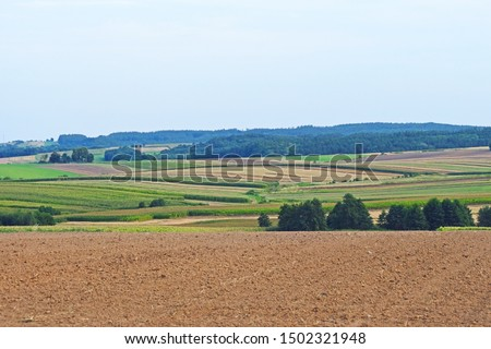 Field plowed, sown cereals. Agriculture plowed field in spring day. Black soil plowed field. Plowed field with blue sky #1502321948
