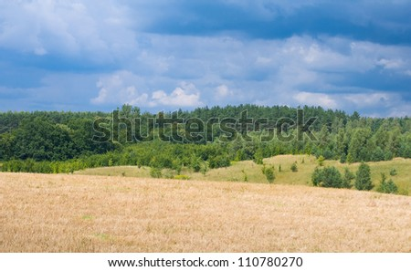 Field, sky and forest