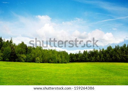 Field trees and blue sky